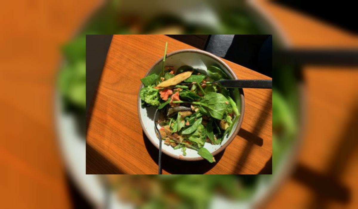 jessica lehmann-ash lunch