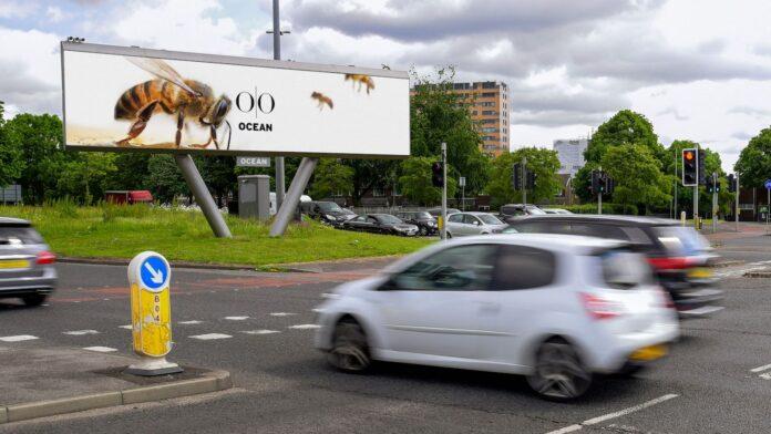 Wildlife DOOH - Ocean Princess Road Manchester
