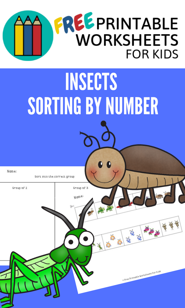 Insects Sort By Quantity | Free Printable Worksheets For Kids | Help preschoolers develop number sense with this insect-themed activity