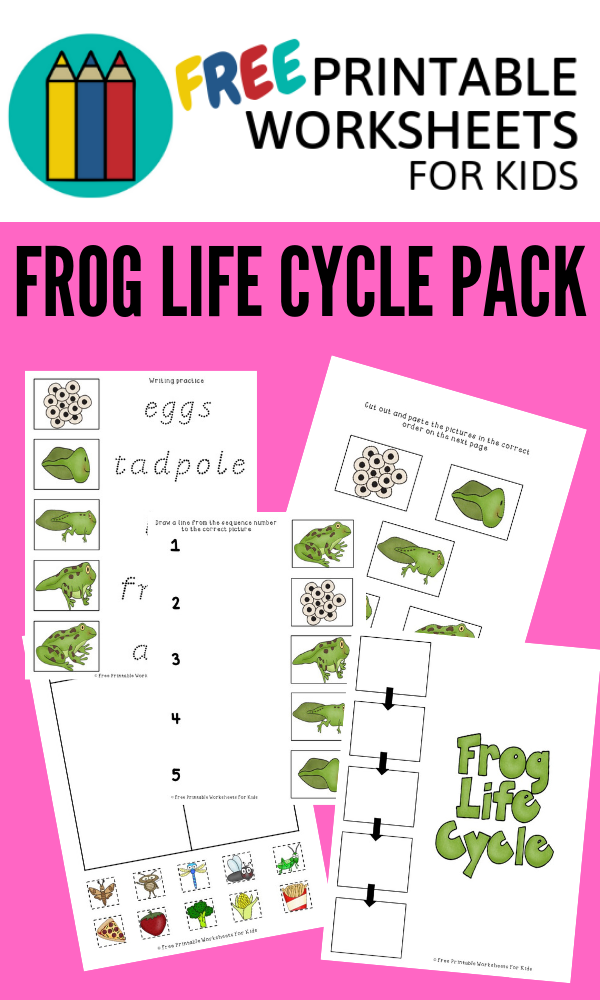 Frog Life Cycle | Free Printable Worksheets For Kids | This worksheet packet contains 3 activities about the frog's life cycle.