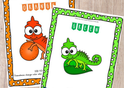 These Rainbow Chameleon Color Sorting Mats combine color word recognition, early math skills, fine motor development and science all in one. Fun Animal Printables for Preschool and Kindergarten | Color Themed Sorting Games | Hands On Math Homeschool Activities | Kids Classroom Center Ideas and Worksheets #FreePrintableWorksheetsForKids #rainbow #sorting #color