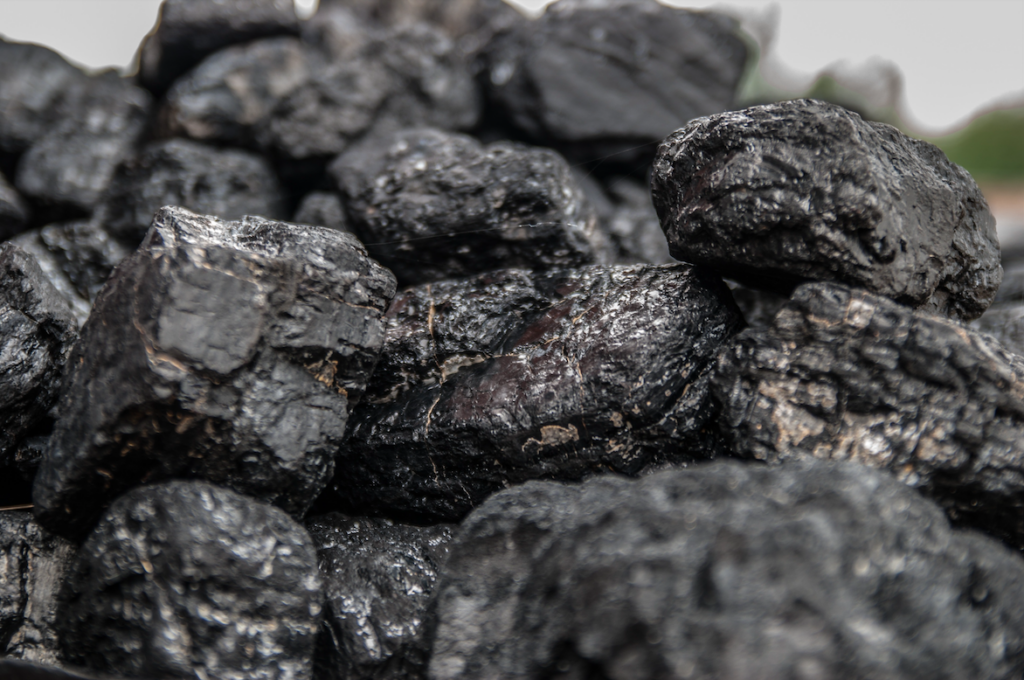 Coal electricity 2024