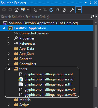 asp.net mvc Solution Explorer - fonts klasörü