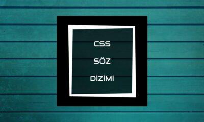 CSS Söz Dizimi