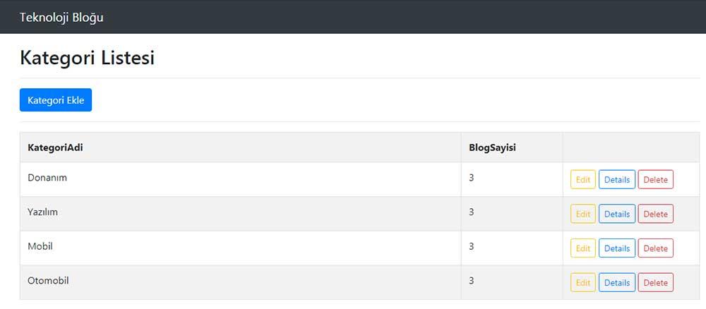 asp.net mvc teknoloji bloğu - Category/Index sayfası tarayıcı görüntüsü
