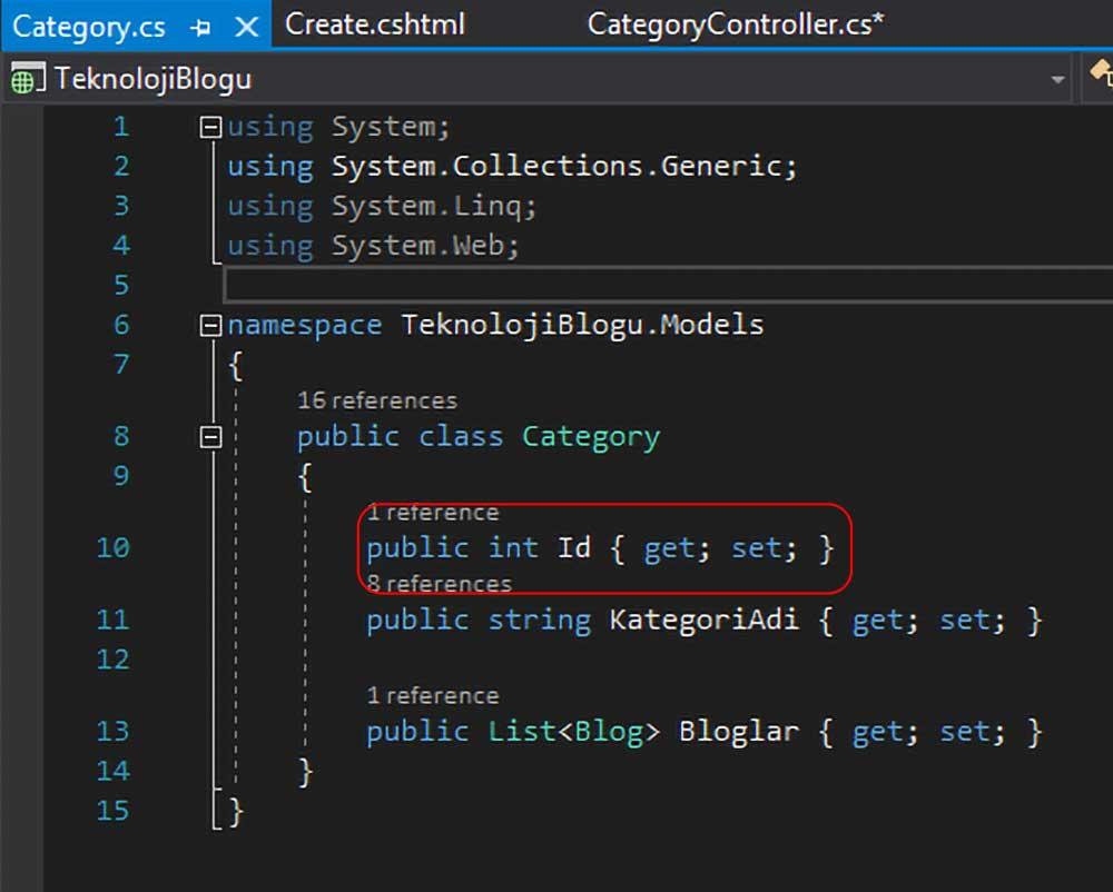 asp.net mvc teknoloji bloğu - formdan gönderilecek Id alanını Category.cs üzerinden ayarlama