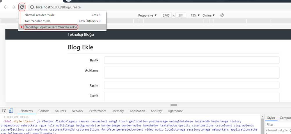 asp.net mvc teknoloji bloğu - ön belleği boşaltarak tam ekran yapıldığını gösteren resim