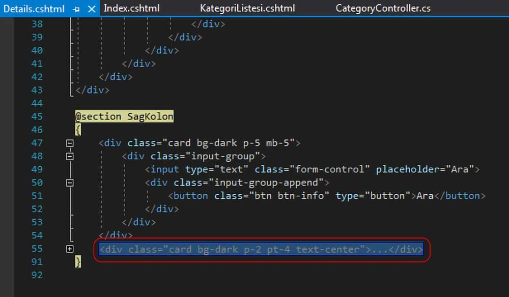 asp.net mvc teknoloji bloğu - Details.cshtml dosyasında bulunan kategori menüsü ile alakalı silinecek kodlar