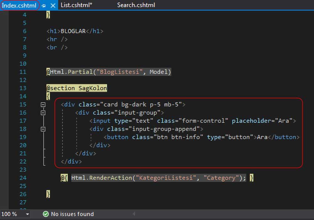 asp.net mvc teknoloji bloğu - index.cshtml dosyasında blog arama kutuları ile ilgili kodların silinmeden önceki hali