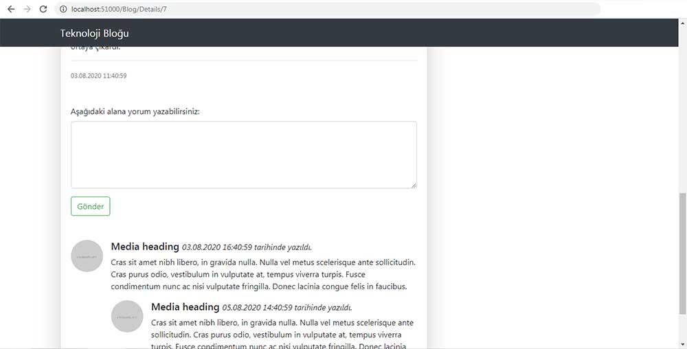 asp.net mvc teknoloji bloğu - /Blog/Details sayfasında yorum kısmını gösteren resim