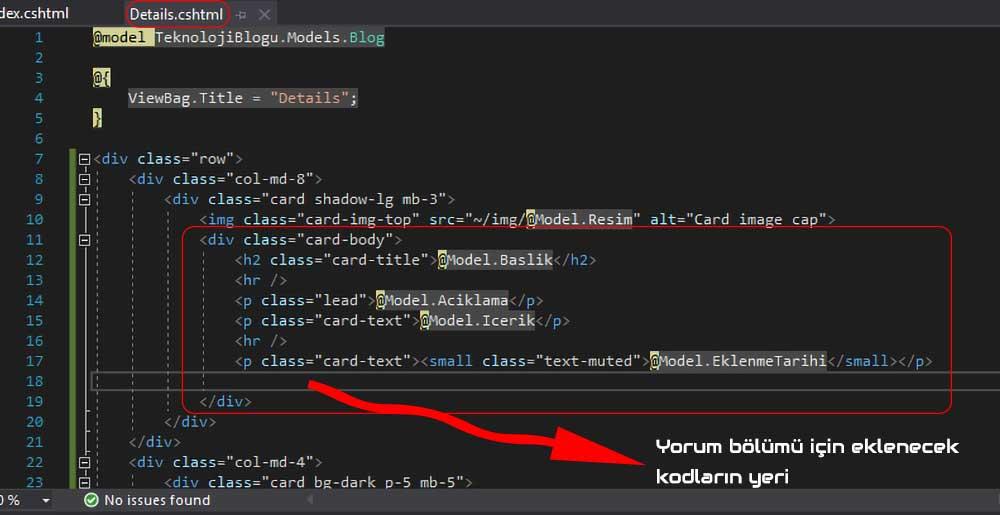 asp.net mvc teknoloji bloğu - Details.cshtml dosyasında yorum bölümü için eklenecek kodların yeri
