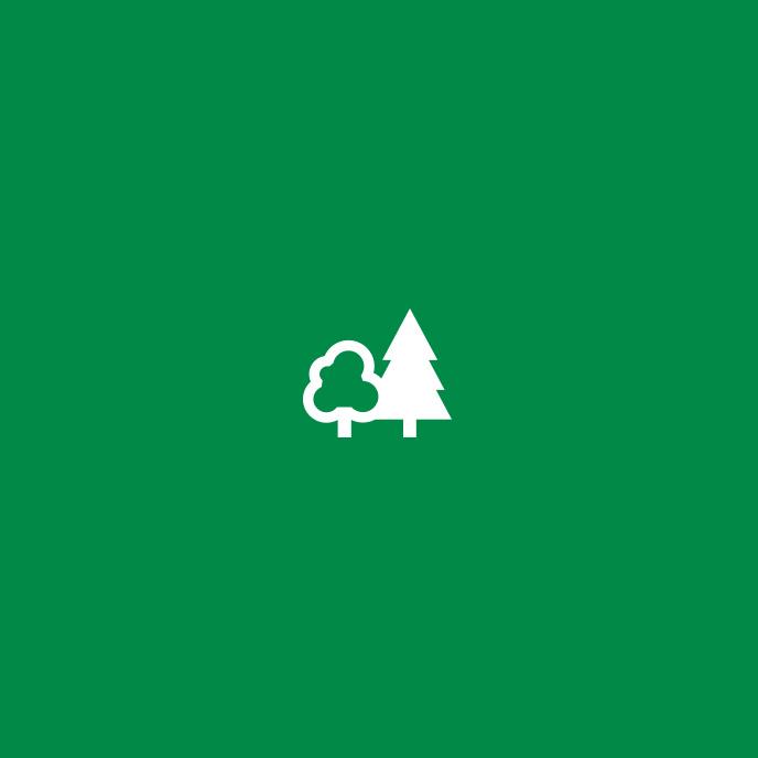 Gisburn Forest