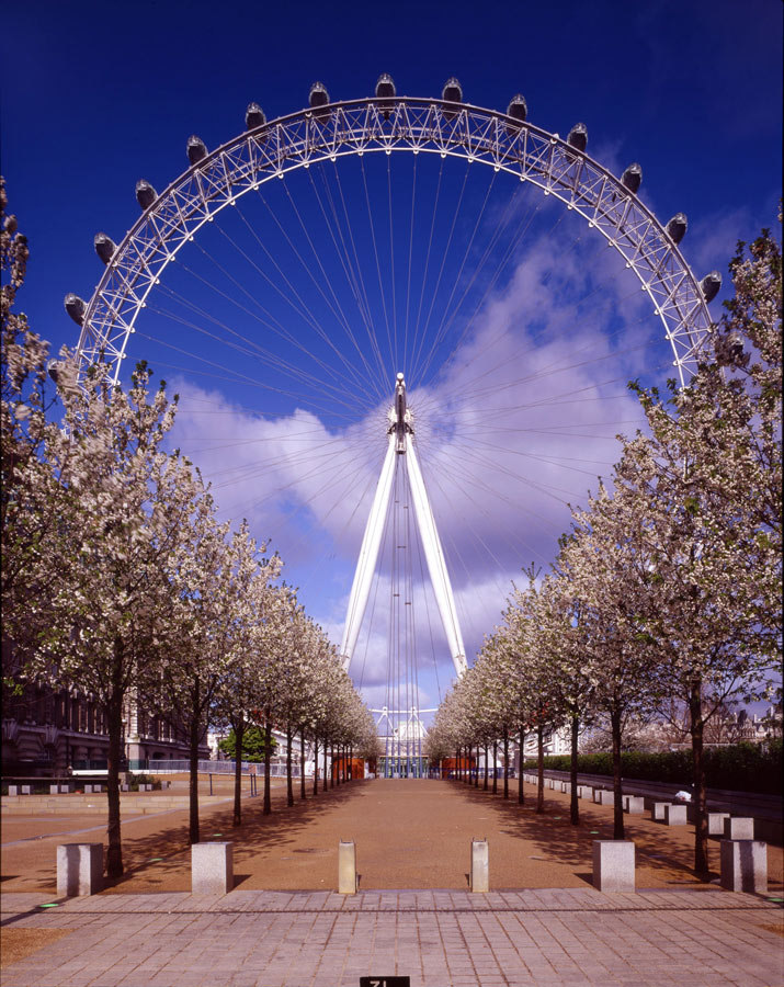 View from Belvedere Rd. The London Eye by Marks Barfield Architects