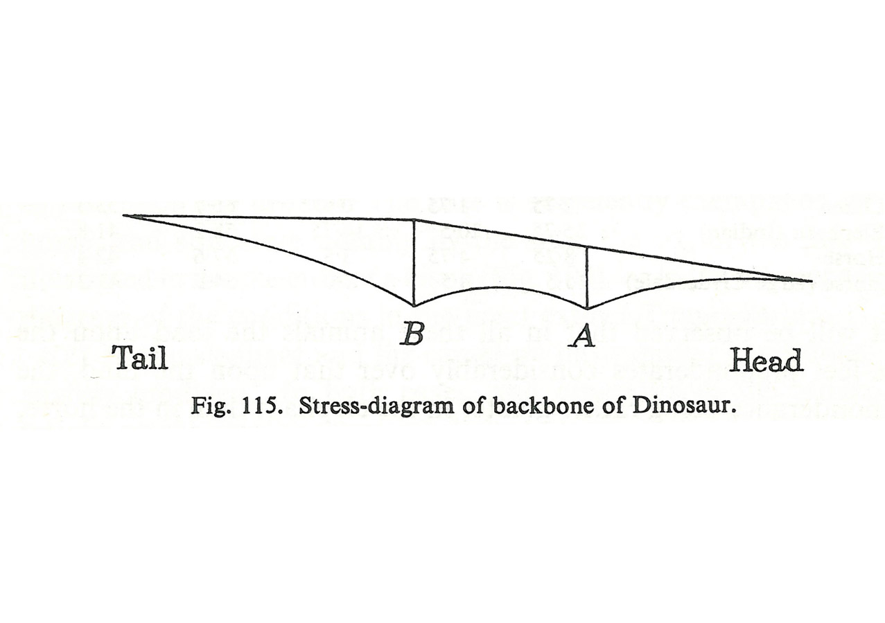 stress diagram of backbone - Bridge of the Future by Marks Barfield Architects