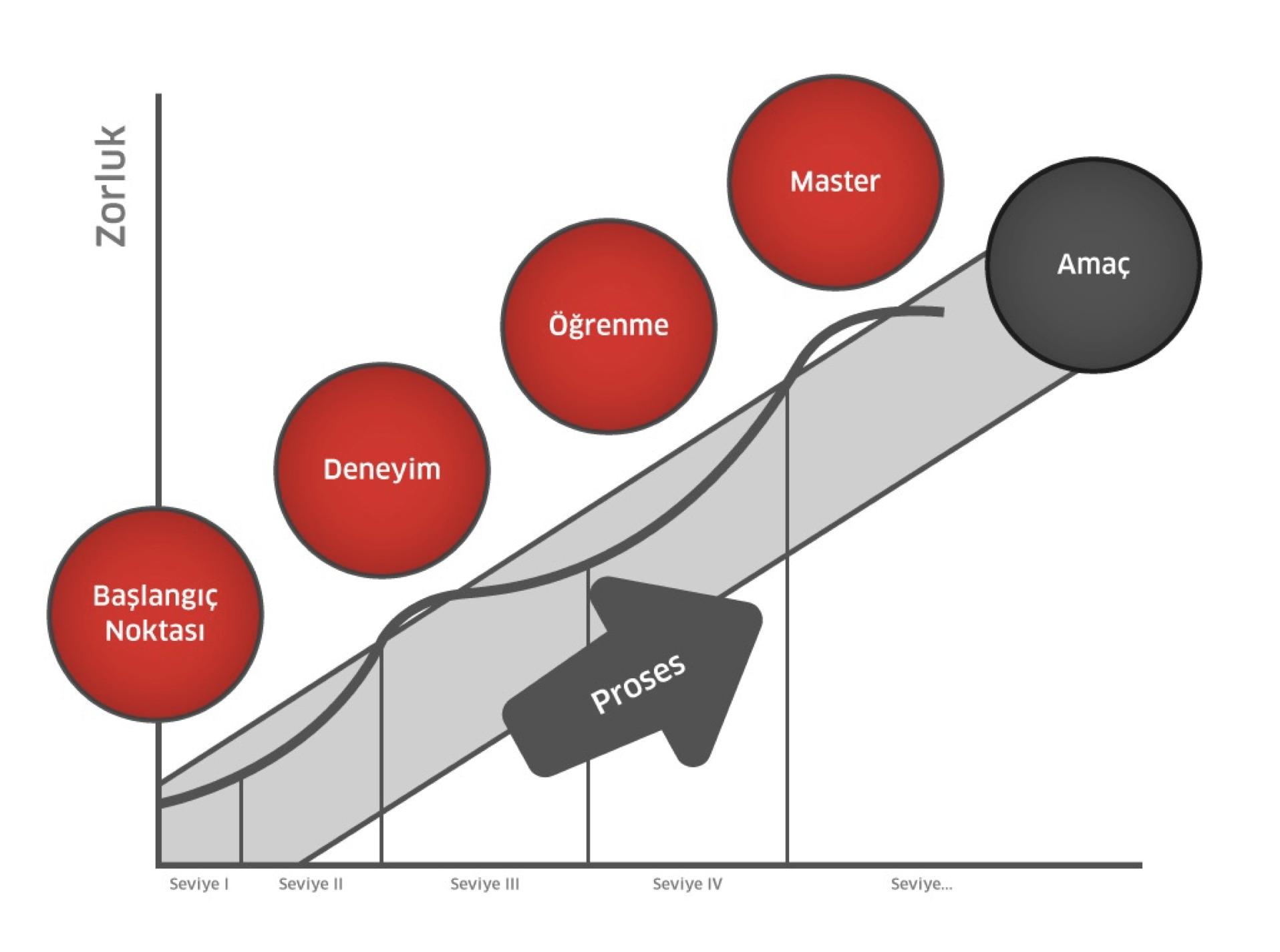 akış kuramı modeli