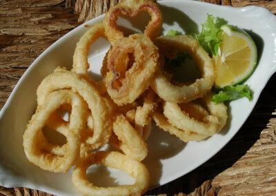Fresh fried kalamari