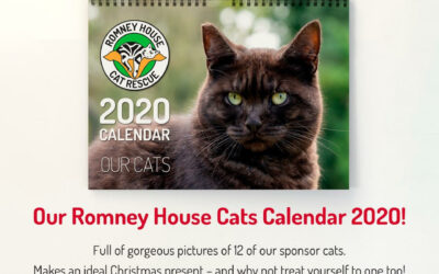 Pre-Order Your 2020 Calendars