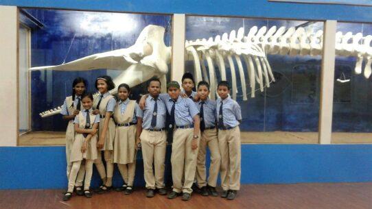 Museum Visit - St Francis Xaviers High School