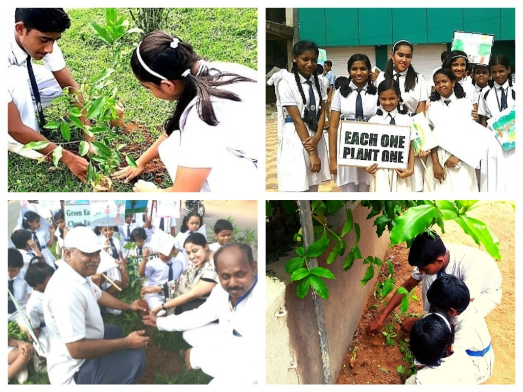 sfxhs tree planting with students