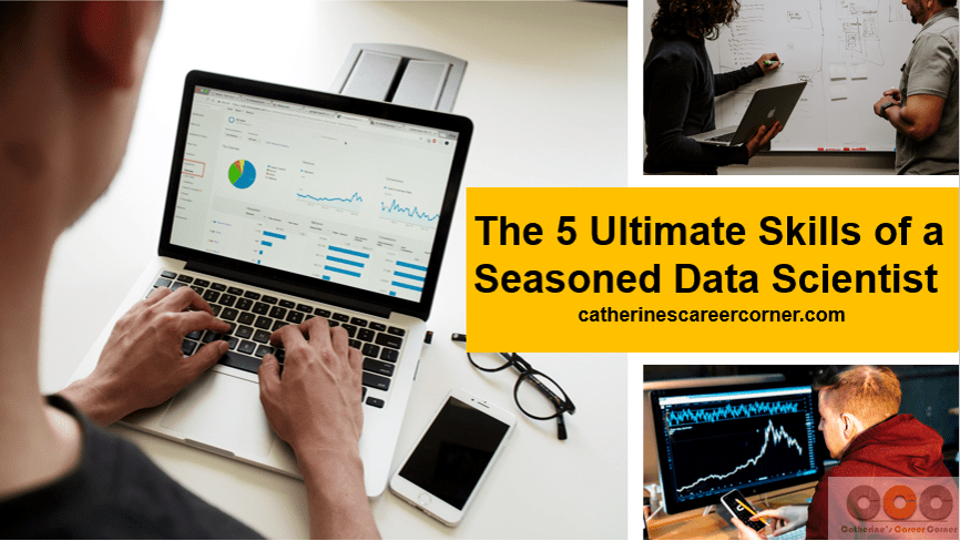 The ultimate skills of a seasoned Data Scientist