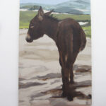 Donkey in the dunes,  Philine van der Vegte