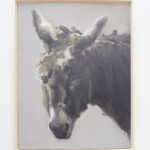 Sleeping donkey,  Philine van der Vegte
