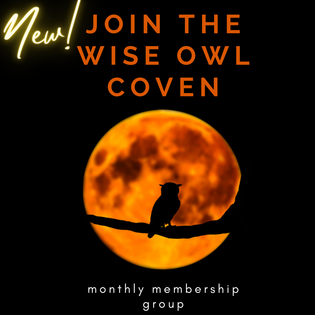 small owl banner