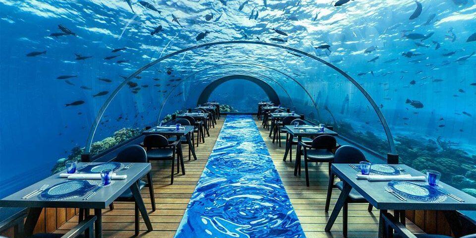 Reisen in Style Magazin - Malediven Bucketlist - Unterwasser Restaurant Hurawalhi