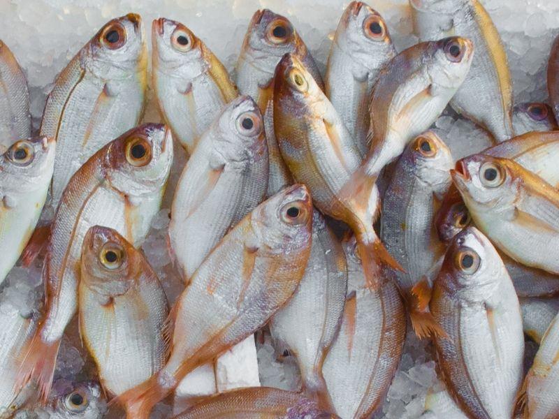 le-poisson-frais-est-bon-pour-la-sante