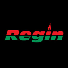 regin products limited