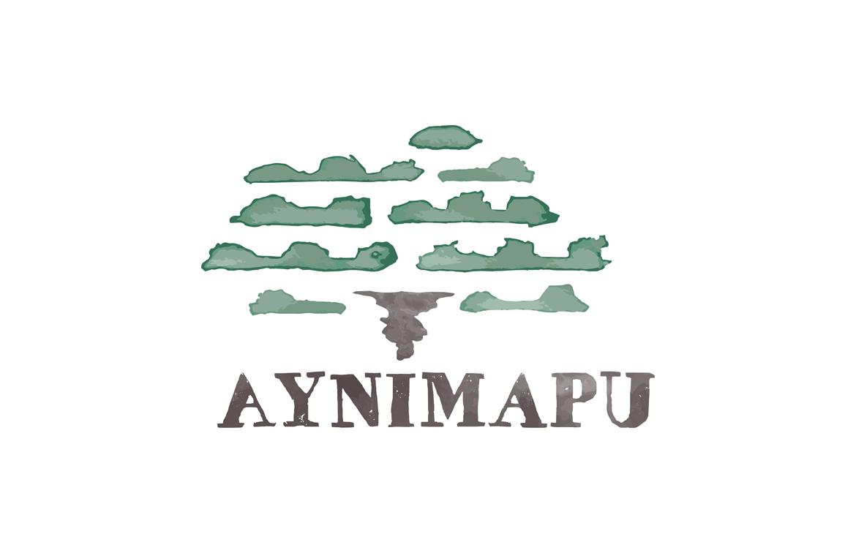 ayni-cf-up-01