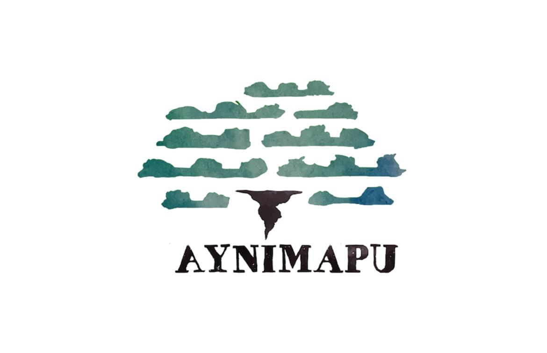 ayni-cf-up-03