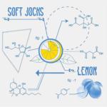 Soft Jocks – 'Lemon'