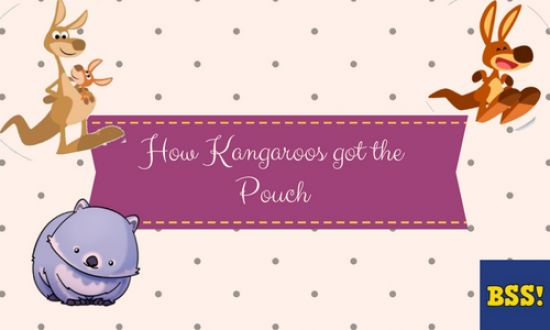 how the kangaroo got its pouch