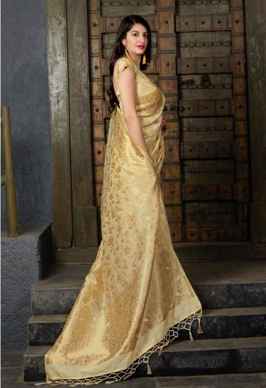 Golden Colour Saree with Contrast Blouse