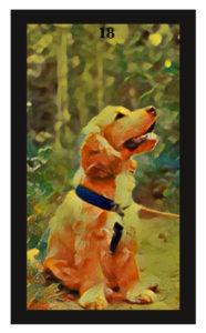 Lenormand Dog Card