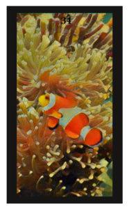 Lenormand Fish Card