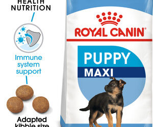 Royal Canin Maxi Puppy Dry Dog Food – 15kg By Royal Canin