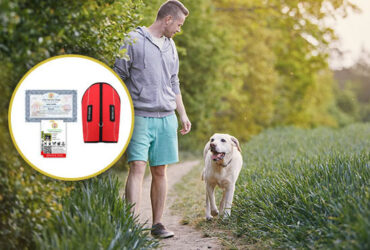 The Service Dog & Support Dog Registry That Makes Your Life Easier