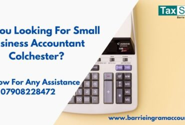 Drive Your Business Efficiently With Small Business Accountant Colchester