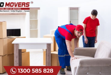 Why Choose Removalists Perth For Moving Home?