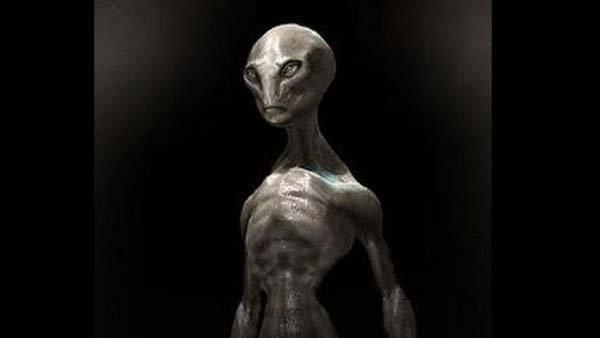 alieno-alto-grigio
