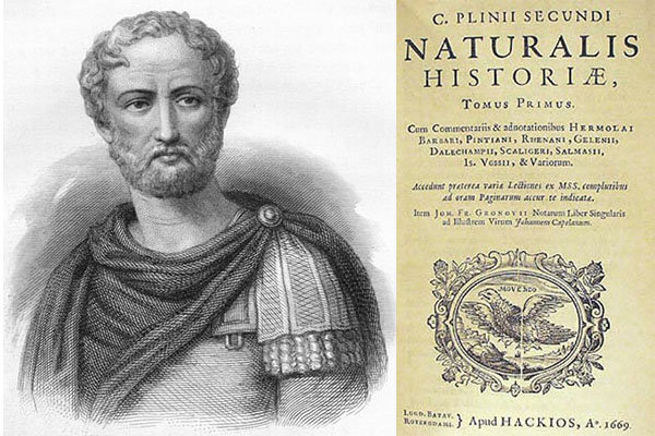 Plinio il VecchioNaturalis historia