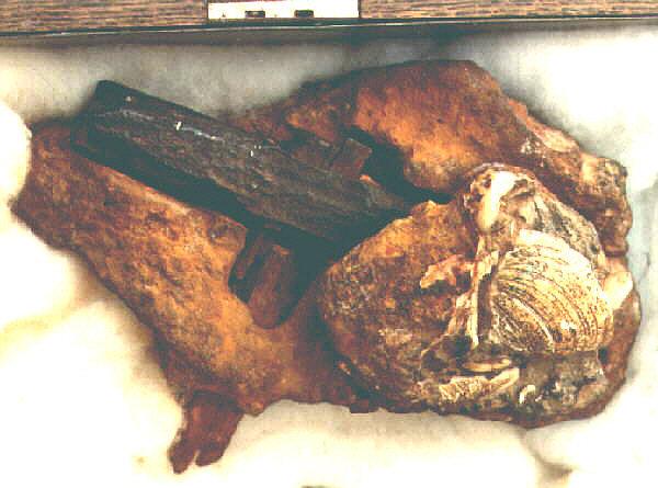 artefatti Il martello da 400 milioni di anni