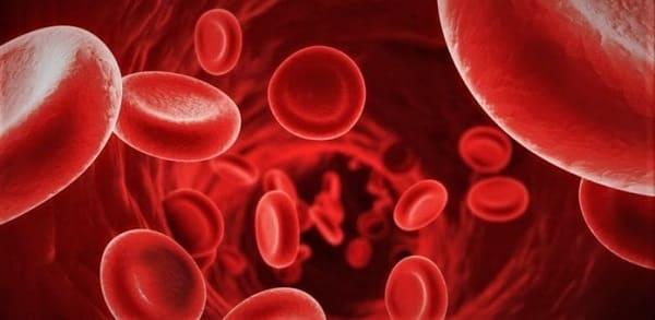 Adrenocromo sangue