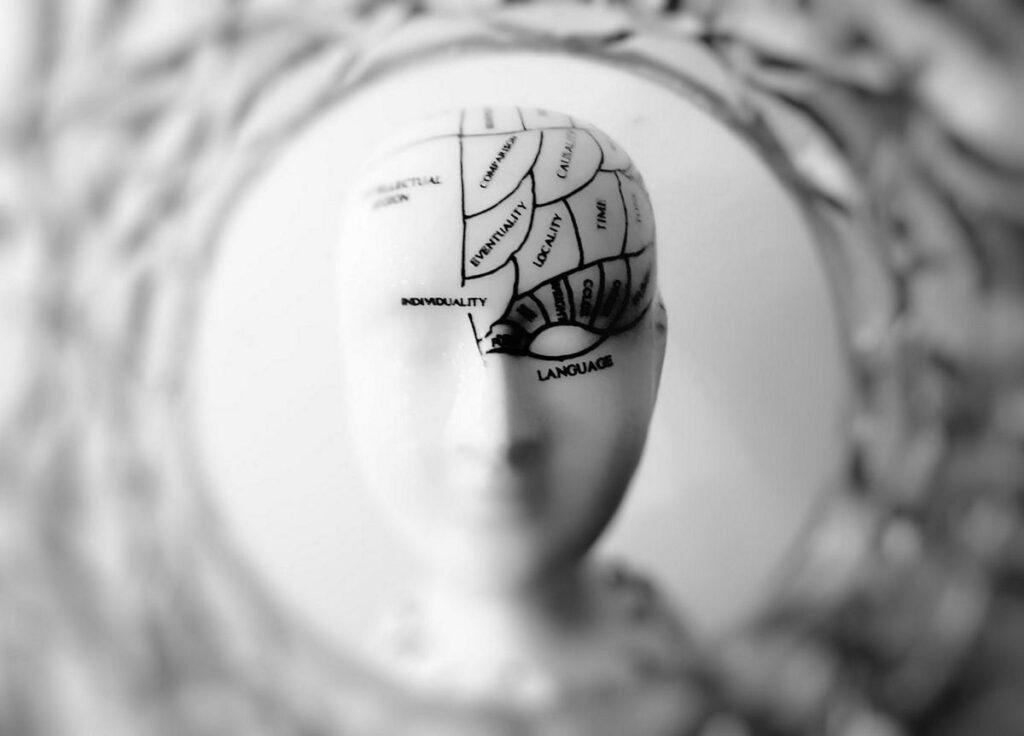 Brain Parts on White Head representing brain injury