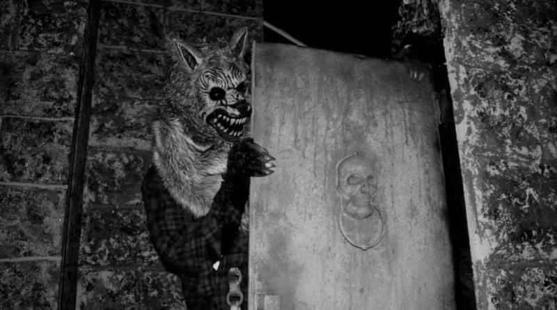 beware-the-dark-realm-werewolf