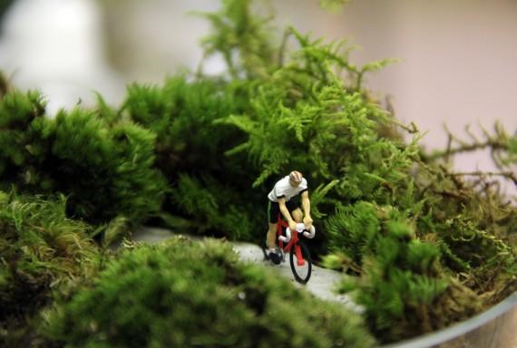 cyclist-terrarium-570x384