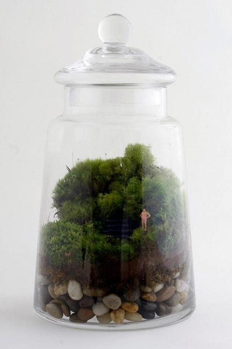 twig-terrarium-4