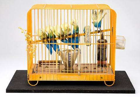 kudovotreportraitbirds